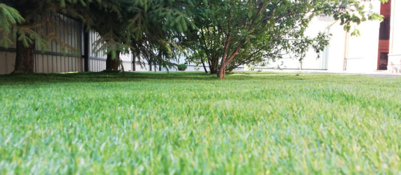 Ландшафтная искусственная трава 25 мм «UF Grass» (Биколор)